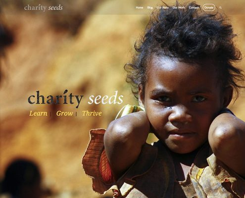CharitySeeds.org Non-Profit site