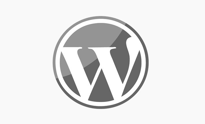 WordPress website design logo image